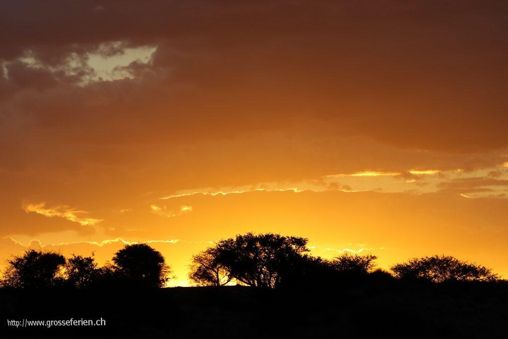 namibia_2018_017