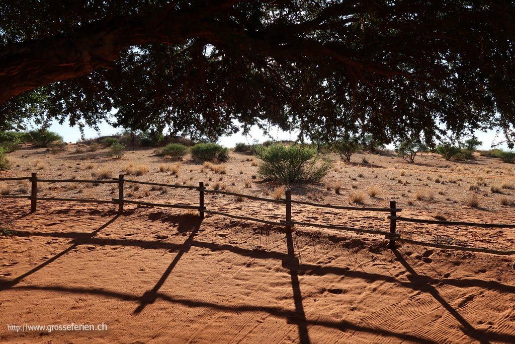 namibia_2018_020
