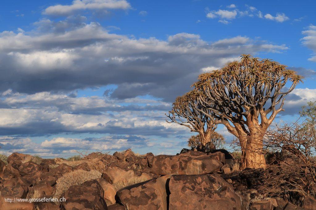 namibia_2018_034