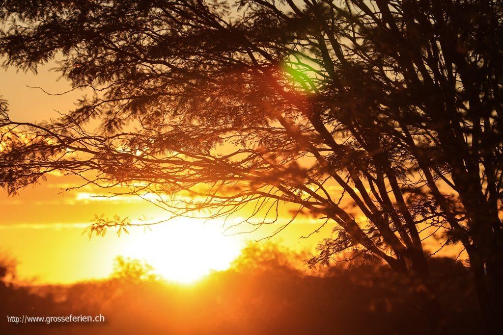 namibia_2018_048