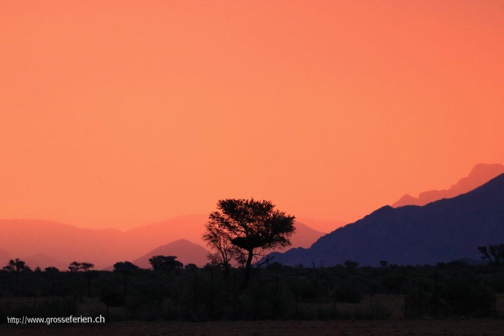 namibia_2018_076