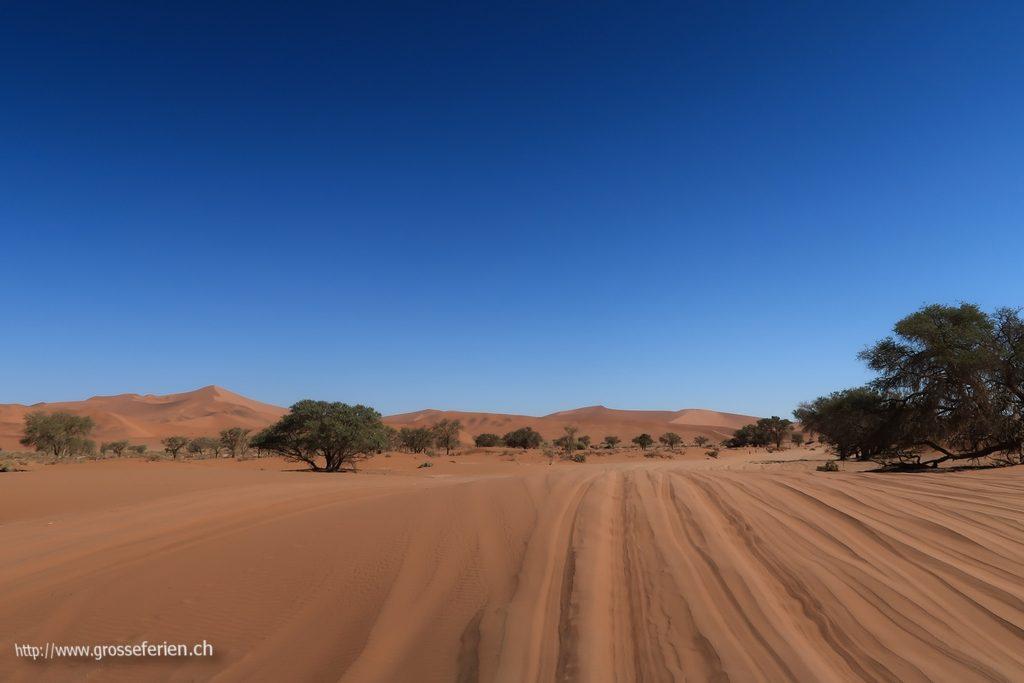 namibia_2018_081