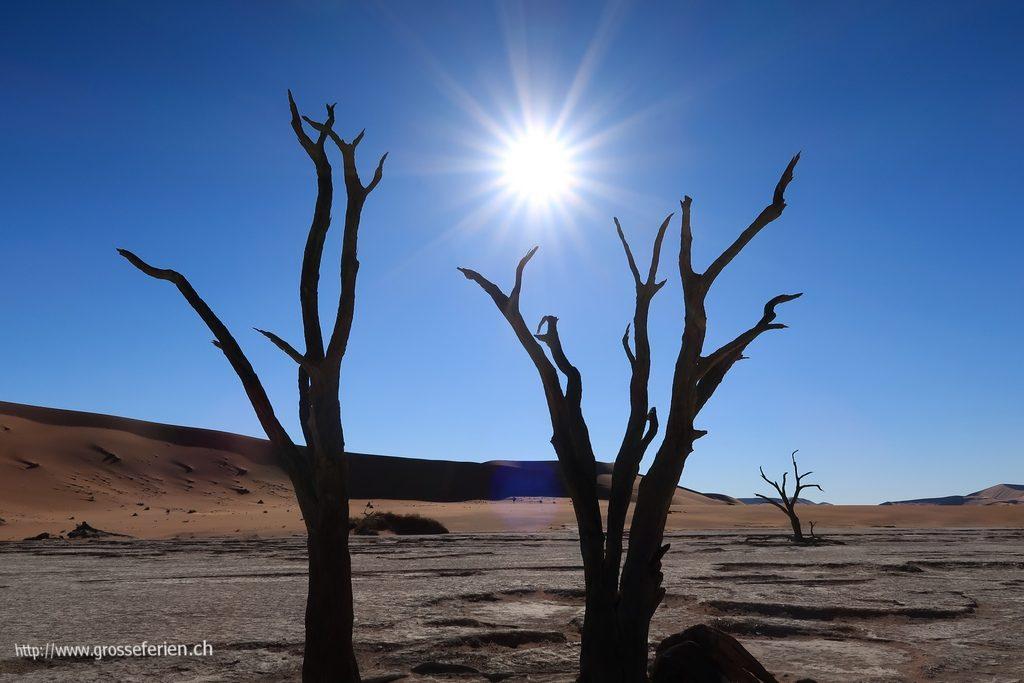 namibia_2018_089