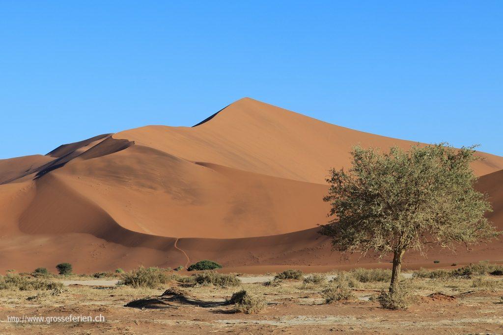namibia_2018_108