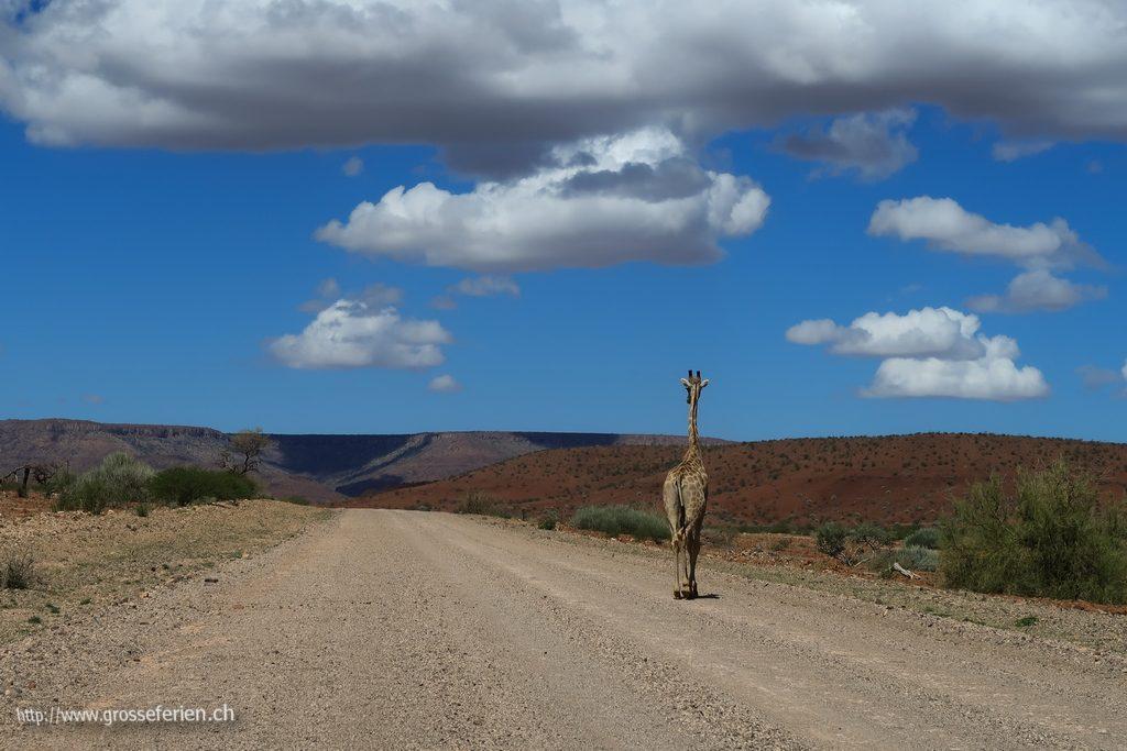 namibia_2018_248