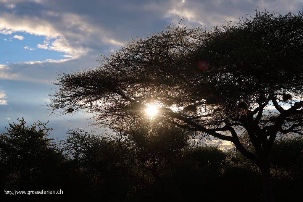 namibia_2018_322