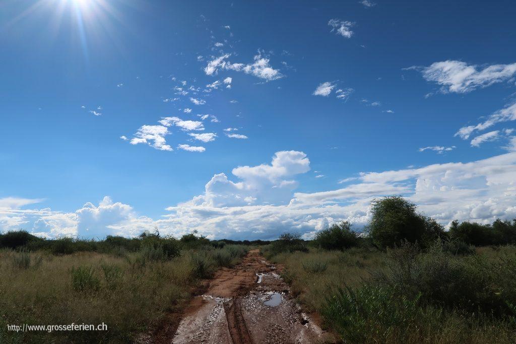 namibia_2018_337