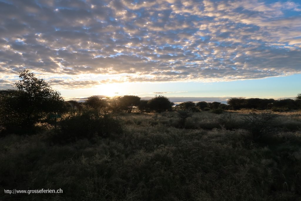 namibia_2018_343