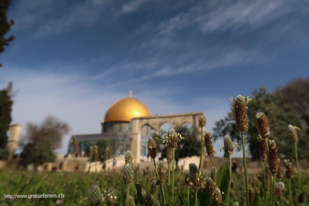 israel_151